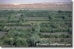 Lush Gardens by the Tigris, Diyarbakir, Southeastern Turkey